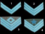 Confederate Infantry Insignia Chevrons [Allow 5-6 Weeks]